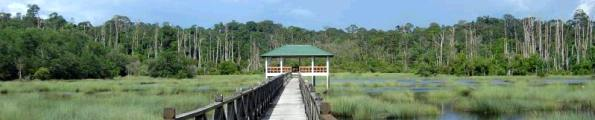lugan-lalak.jpg Brunei travel and tours and hotel reservations